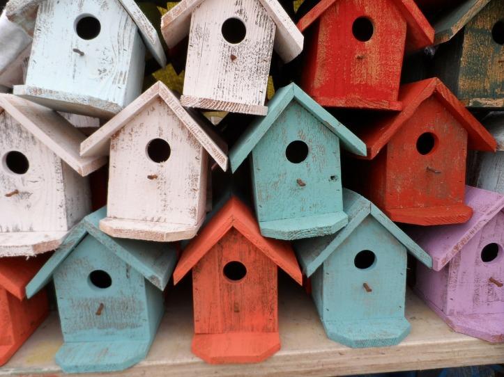 bird-house-72332_1280