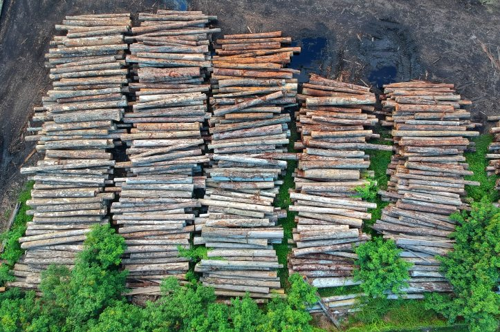 bird-s-eye-view-deforestation-high-1268068.jpg