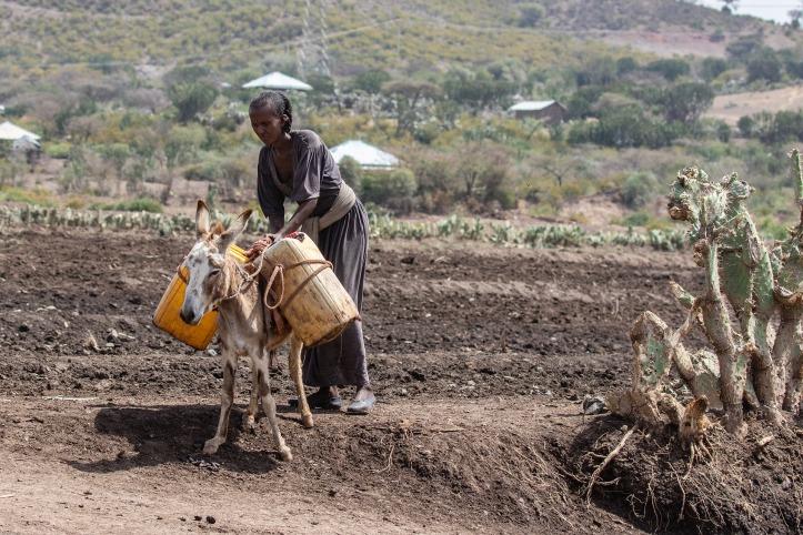 ethiopia-4117617_1920.jpg
