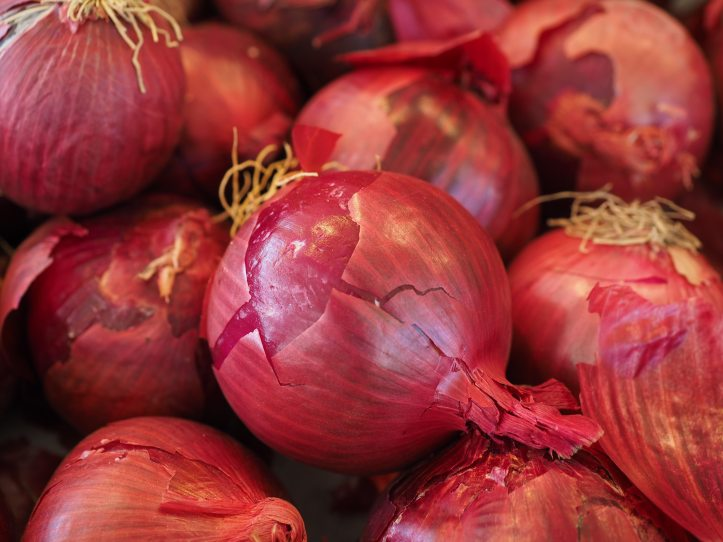 bulb-onion-close-up-food-47051