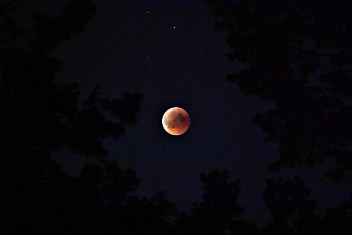 astrology-astronomy-astrophotography-1276429.jpg